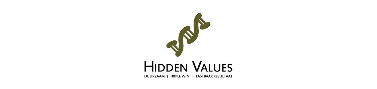 bedrijfslogo hidden values huisstijl grafisch ontwerp design