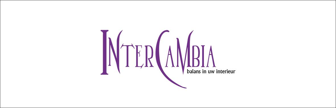 bedrijfslogo intercambia huisstijl grafisch ontwerp design