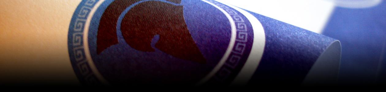 minerva flyers logo huisstijl drukwerk header